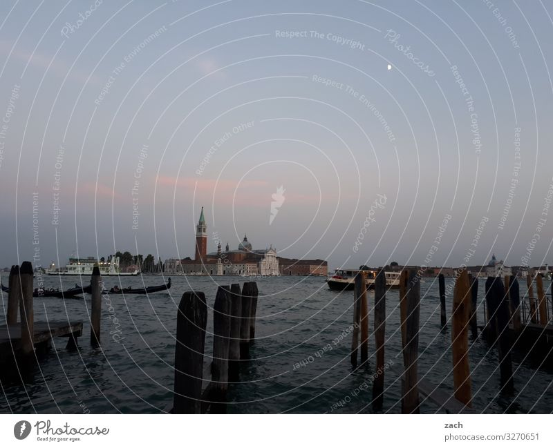 Water page Vacation & Travel Venice Italy Old town Religion and faith Church Dome Palace Tower Gray Colour photo Exterior shot Deserted Copy Space top
