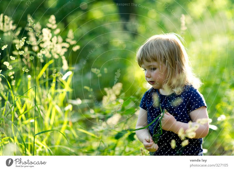 Human being Child Nature Blue Green Summer Plant Girl Environment Grass Playing Leisure and hobbies Blonde Infancy Idyll Contentment