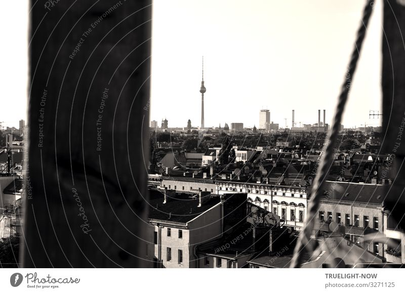 farsighted | over the roofs of Berlin 2 Tourism Far-off places Sightseeing City trip Berlin TV Tower Capital city Downtown Skyline House (Residential Structure)