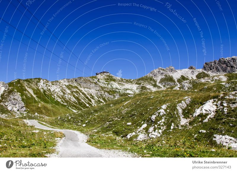 Nebelhorn summit station Vacation & Travel Tourism Trip Mountain Hiking Environment Nature Landscape Plant Cloudless sky Sun Autumn Beautiful weather Grass Rock