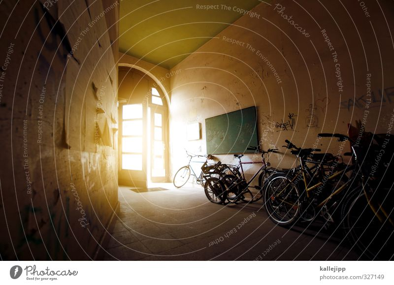 House (Residential Structure) Yellow Bright Flat (apartment) Leisure and hobbies Open Bicycle Transport Lifestyle Living or residing Cycling Entrance