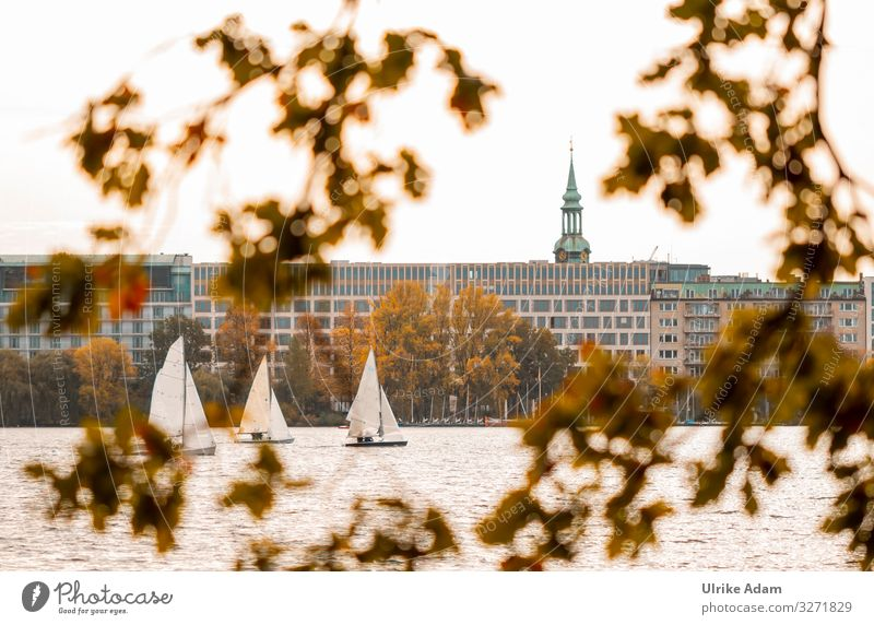 Sailboats on the Alstersee in Hamburg - UT Hamburg 2019 Lake Alster sailboats Branch Town Germany Hanseatic City warm Water Autumn Autumn leaves Church spire
