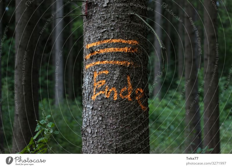 Nature Plant Landscape Animal Environment Characters Esthetic Signs and labeling Signage End Warning sign