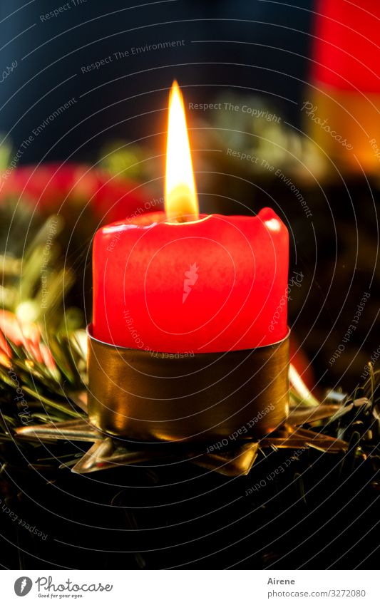 Christmas & Advent Red Relaxation Winter Black Warmth Religion and faith Feasts & Celebrations Decoration Illuminate Gold Glittering Idyll Candle Hope Fragrance