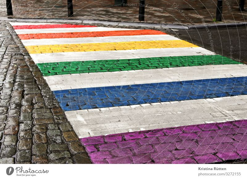 rainbow crossing Freedom Homosexual Transport Traffic infrastructure Pedestrian Street Zebra crossing Sign Town Multicoloured Acceptance Love Solidarity