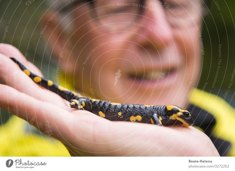 Nature Man Beautiful Animal Black Adults Yellow Exceptional Leisure and hobbies Wild Hiking Illuminate Glittering Esthetic Wait Observe