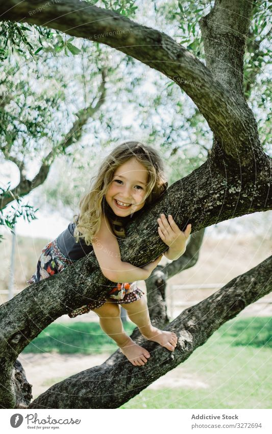 Smiling girl climbing tree in sunny day adventure garden having fun childhood excited nature summer holiday park active sport high brave green free time