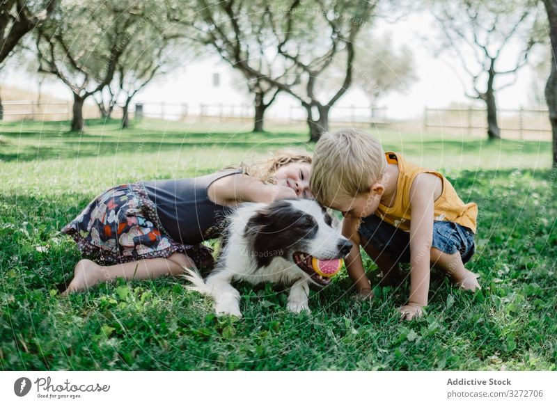Lovely boy and girl hugging fluffy dog with ball in mouth on grass children garden friend pet cuddling summer friendship adorable together happy playing lovely