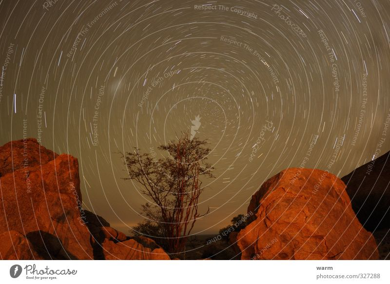 Circular path Starry sky Long-term exposure Environment Nature Landscape Earth Sky Cloudless sky Night sky Stars Tree Mountain Stone Rotate Warmth Brown Orange