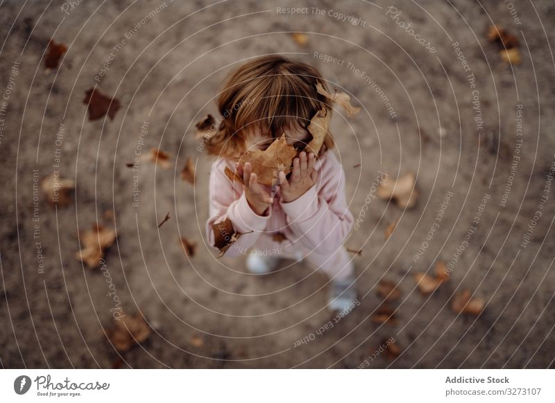 Joyful child scattering leaves on lawn in park kid throwing up autumn childhood joyful enjoying fun cheerful nature fall playing foliage motion excitement
