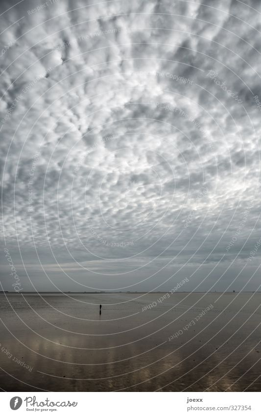 Human being Sky Nature Loneliness Calm Clouds Beach Dark Cold Coast Gray Horizon Air Weather Walking Island