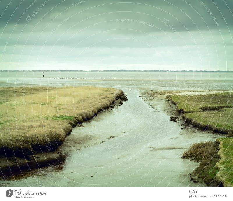 Blue Green Water White Landscape Relaxation Clouds Yellow Coast Gray Infinity North Sea Turquoise Denmark Rømø