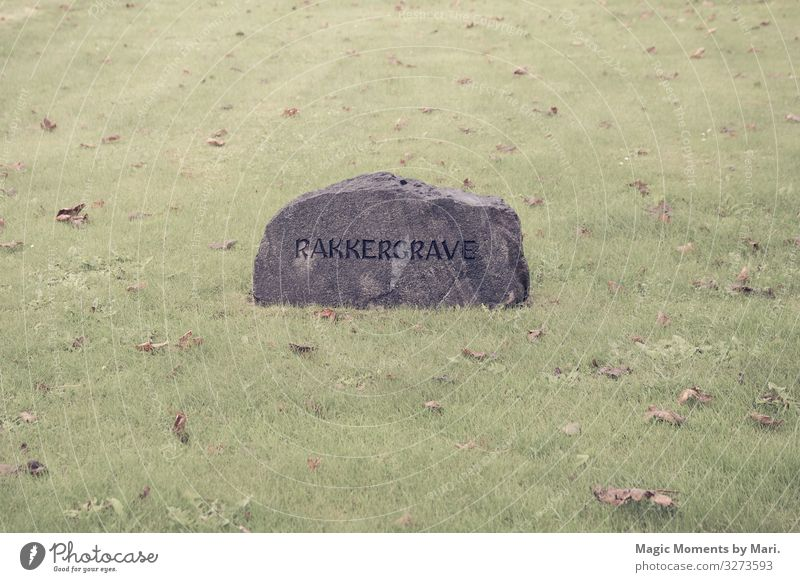 The knackers gravestone Stone Old Tombstone field heritage Colour photo