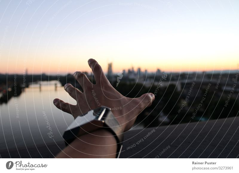 Longing - a hand reaches for the horizon Adventure Far-off places Freedom Young man Youth (Young adults) Adults Hand Horizon Beautiful weather River bank