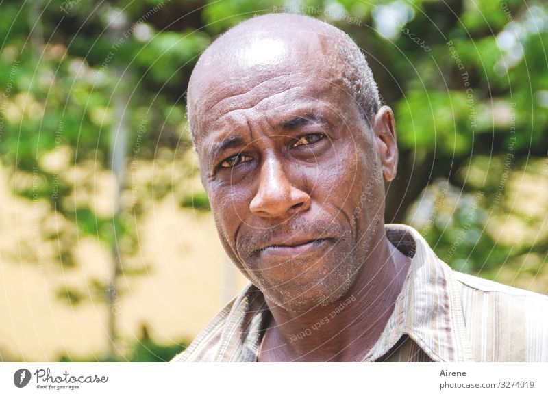 Cuban man Masculine Man Adults Senior citizen Head 1 Human being 30 - 45 years 45 - 60 years Caribbean Central American Friendliness Brown Green Serene Wisdom