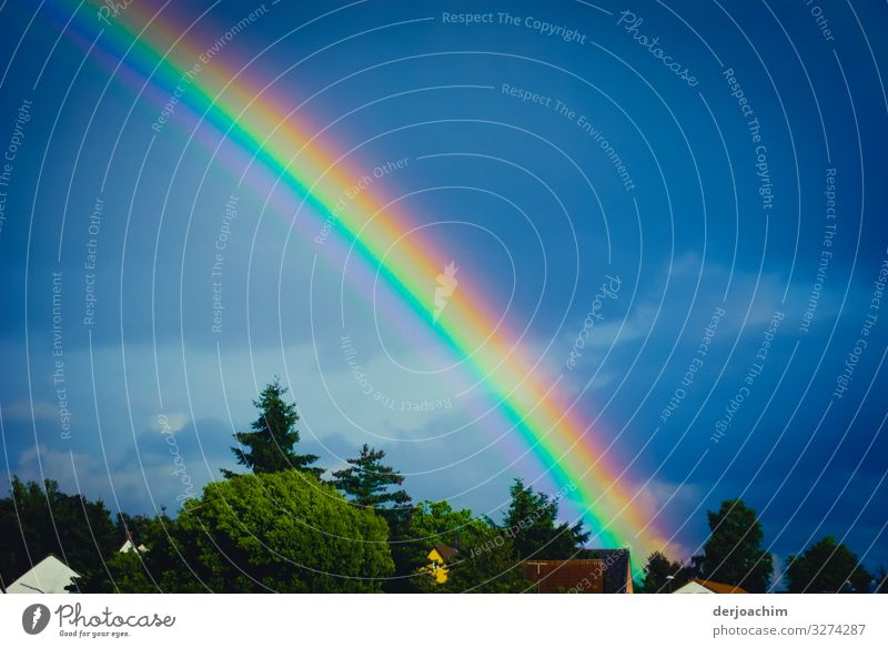 rainbow Joy Senses Summer Environment Cloudless sky Beautiful weather Foliage plant Hill Bavaria Germany Small Town House (Residential Structure) Roof