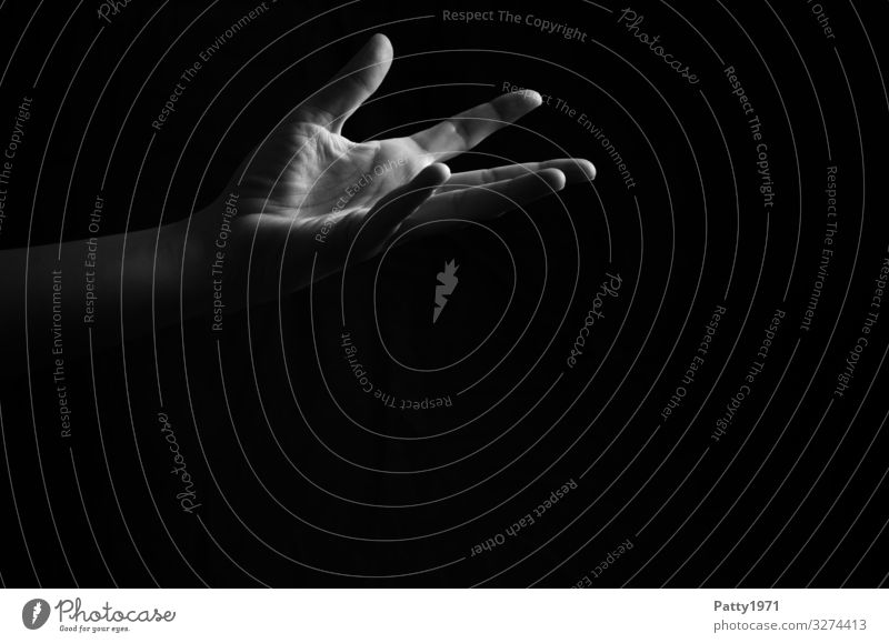 hand Feminine Arm Hand 1 Human being Esthetic Emotions Trust Help Honest Black & white photo Copy Space bottom Copy Space middle Neutral Background Light Shadow