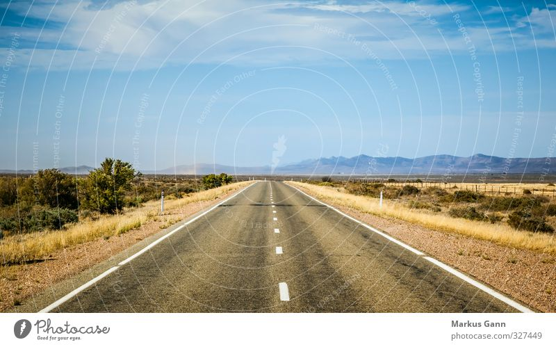 Straight road Landscape Sky Horizon Summer Beautiful weather Transport Traffic infrastructure Street Driving Blue Brown Gray Orange Adventure Freedom Wanderlust