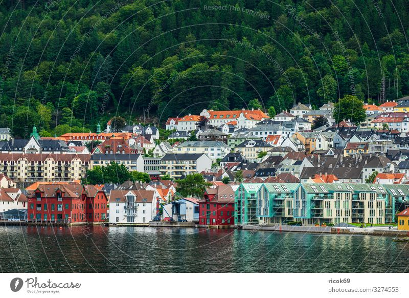 View to the city Bergen in Norway Vacation & Travel Tourism Ocean Mountain House (Residential Structure) Nature Landscape Water Tree Forest Hill Town Building