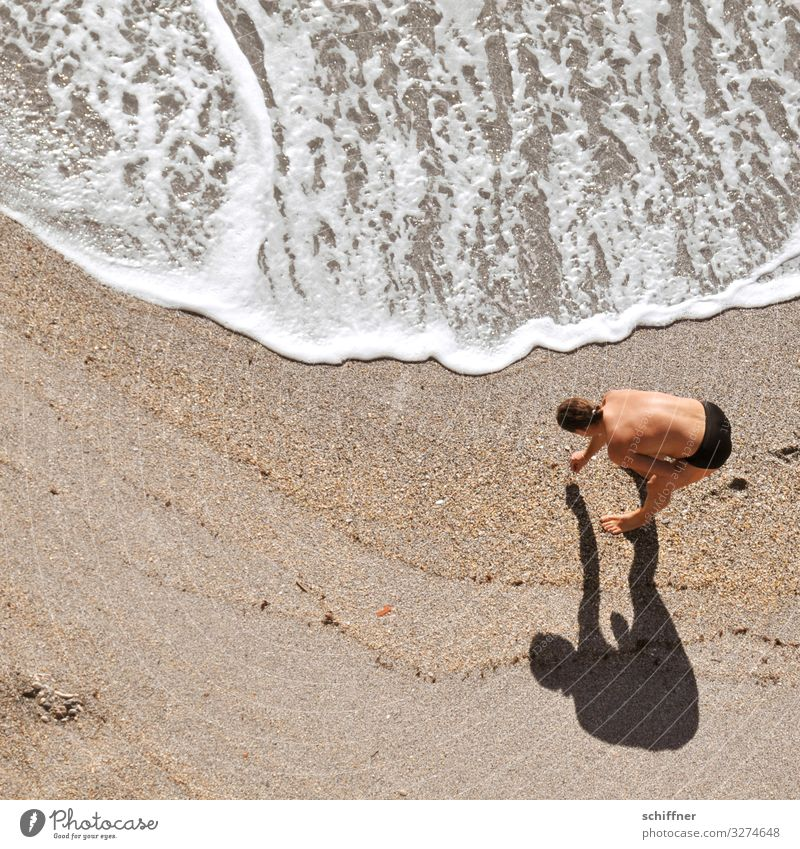 Man collects shells on the beach Beach Waves Swell search questing bent over stooped posture Shadow shadow cast amass collecting hunters and collectors Ocean