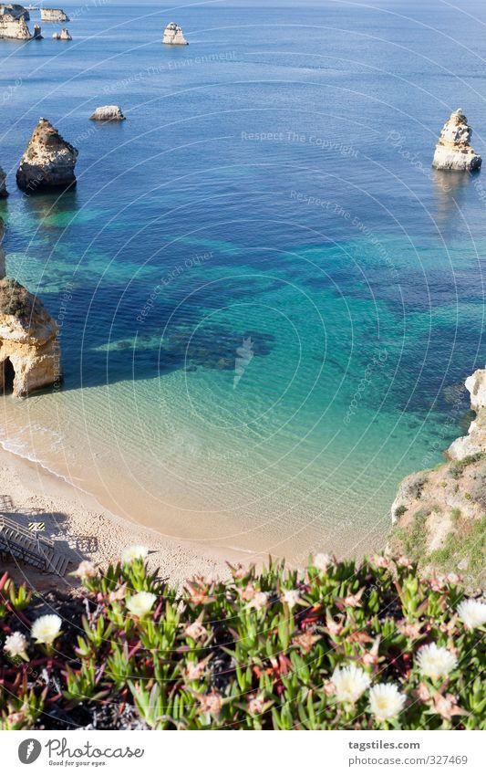 PRAIA DO CAMILO Portugal Algarve Lagos Praia do Camilo praia rock salt Vacation & Travel Travel photography Idyll Card Tourism Paradise Heavenly Paradisical