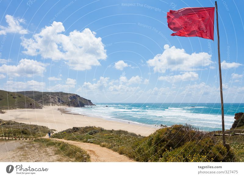 surfer's paradise Portugal Algarve Praia do Amado Surfer Surfing amado rock salt Flag Wind Vacation & Travel Travel photography Idyll Card Tourism Heavenly