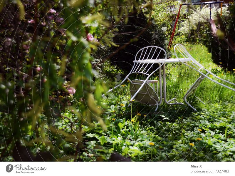 garden idyll Relaxation Calm Living or residing Flat (apartment) Garden Chair Table Moody Idyll Garden chair Garden table Garden festival Feral Colour photo