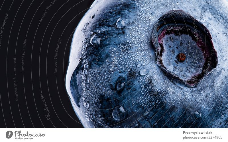 One blueberry covered with water drops isolated on black background. Antioxidant concept. blueberry isolated studio single antioxidant healthy delicious fresh