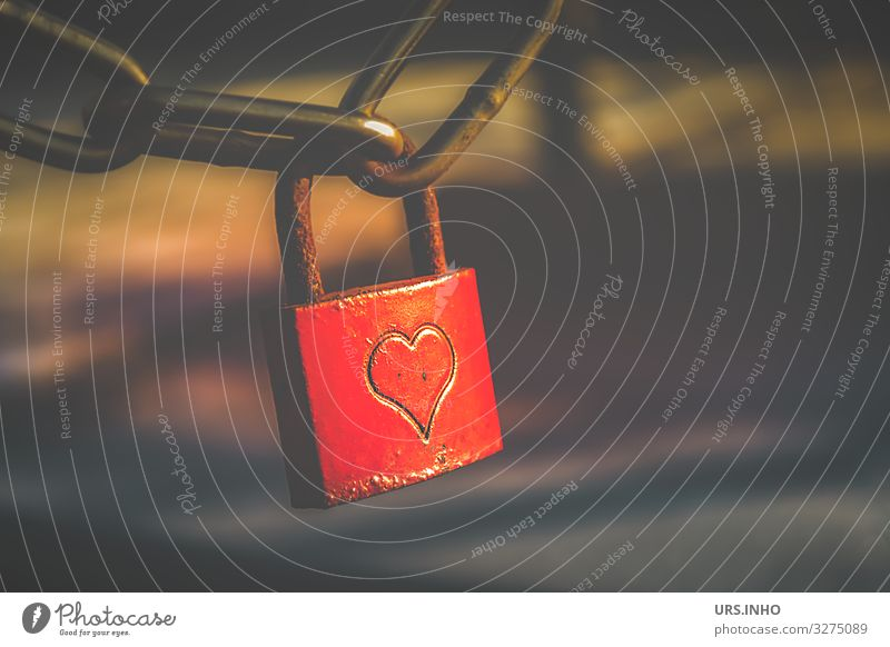 red love lock with heart Valentine's Day Sign Lock Heart Love padlock Brown Red Rust Iron chain Colour photo Exterior shot Deserted Copy Space right