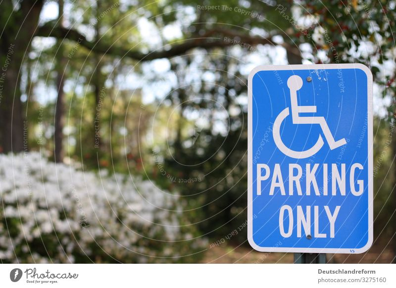 parking space Passenger traffic Wheelchair Road sign Blue Green White Solidarity Independence Mobility Logistics Colour photo Exterior shot Day