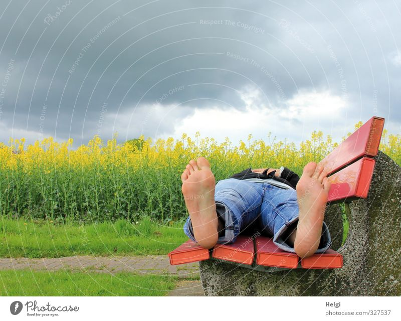 Human being Woman Sky Nature Plant Landscape Calm Clouds Adults Environment Feminine Grass Spring Legs Feet Lie