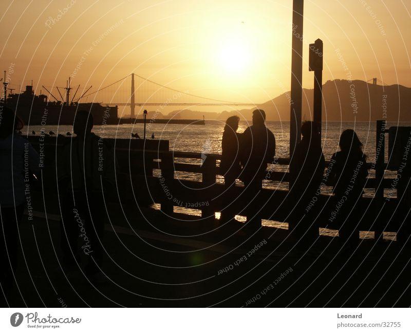 Golden Gate Human being Man Woman Sunset Ocean Bird Americas Golden Gate Bridge San Francisco North America Bay sea water Silhouette