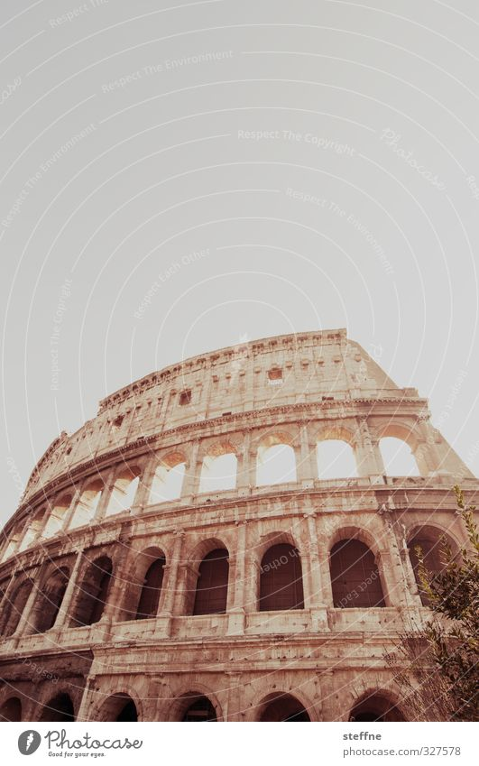 colossally Rome Italy Tourist Attraction Landmark Colosseum Old Esthetic Exceptional Famousness Historic Subdued colour Exterior shot Worm's-eye view Wide angle