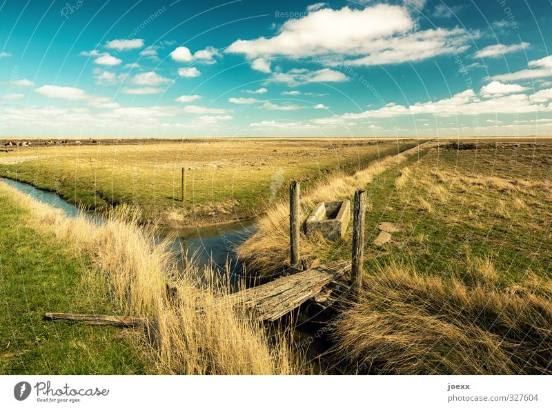 Sky Nature Blue Green Beautiful Water White Landscape Clouds Calm Yellow Meadow Lanes & trails Horizon Brown Field