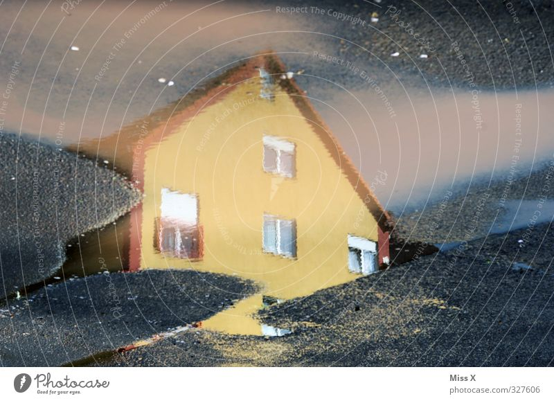 house Water House (Residential Structure) Window Wet Puddle Reflection Street Storm Colour photo Multicoloured Exterior shot Close-up Deserted Sunlight