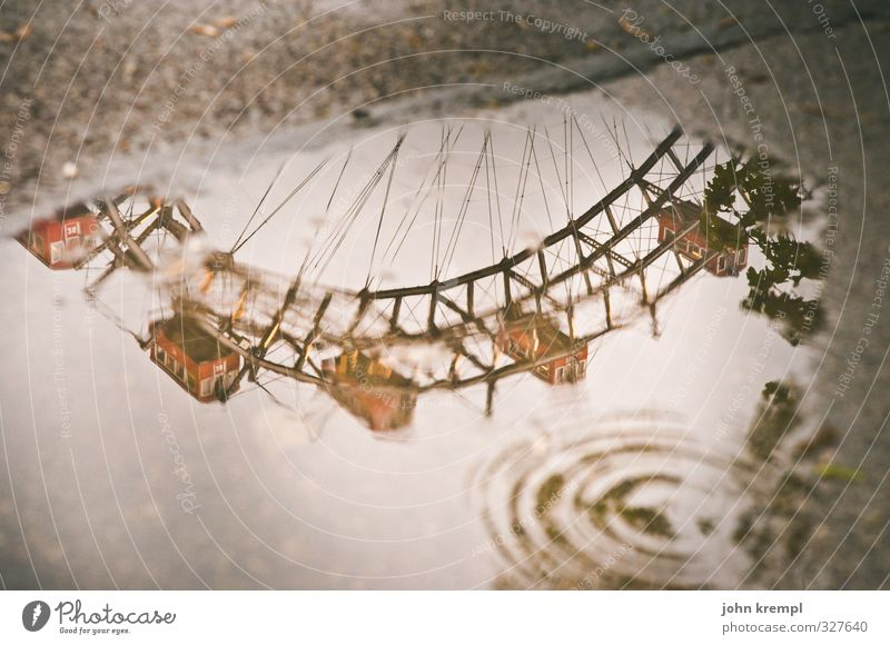 water wheel Bad weather Puddle Vienna Austria Capital city Manmade structures Tourist Attraction Landmark Ferris wheel Prater Rotate Historic Wet Brown Red