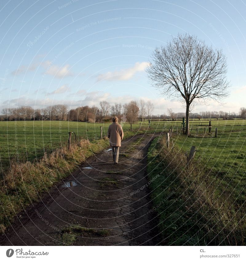 Human being Woman Sky Nature Old Tree Loneliness Landscape Calm Adults Meadow Senior citizen Death Feminine Autumn Sadness
