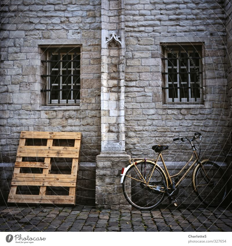 bicycle Bicycle Art Exhibition Subculture Wall (barrier) Wall (building) Facade Paving stone Packaging Palett Ornament Window Metal grid Stone Wood Analog Brown