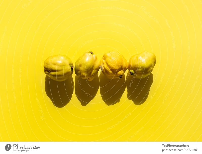 Fresh quinces fruits on yellow background. Four quinces minimal Food Fruit Healthy Eating Bright Delicious Natural Gold Cydonia oblonga above view agriculture