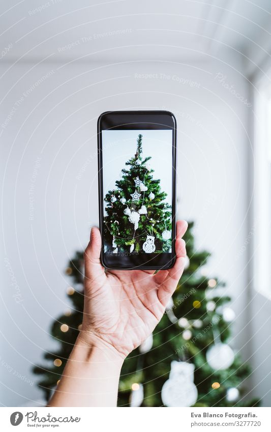 woman hand taking a picture of decorated Christmas Tree at home Hand Cellphone Technology Illustration Screen device Hold Woman Green Magic Lifestyle