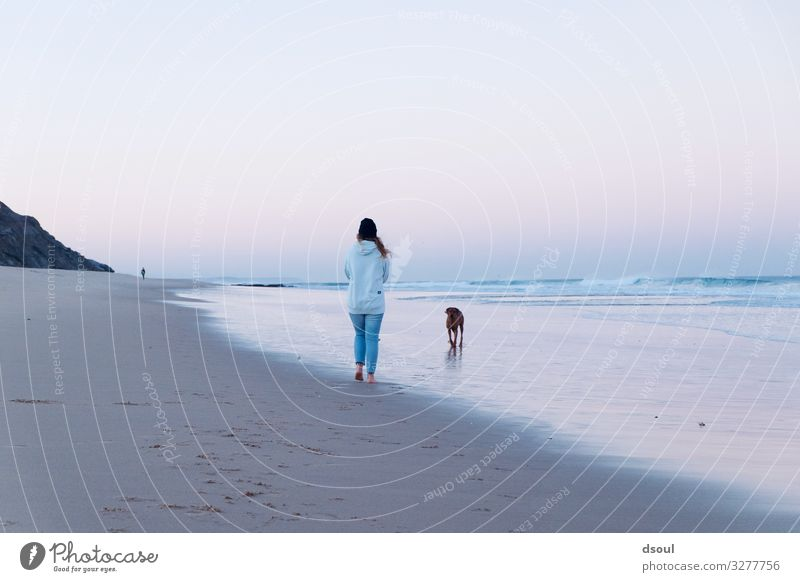 Human being Vacation & Travel Nature Dog Youth (Young adults) Young woman Summer Water Landscape Ocean Far-off places Beach 18 - 30 years Adults Autumn Spring