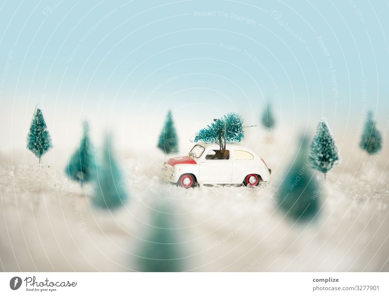 Nature Christmas & Advent Landscape Joy Forest Lifestyle Environment Snow Feasts & Celebrations Style Snowfall Leisure and hobbies Car Transport Shopping Roof