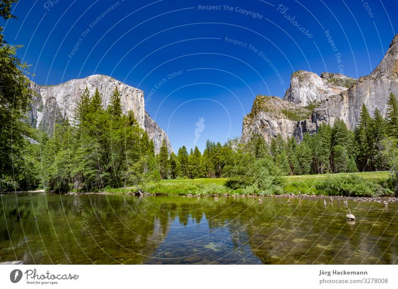 merced river with famous rock el Captain in Yosemite valley Nature Landscape Rock River Moody USA Yosemite National Park america el capitan Colour photo Day