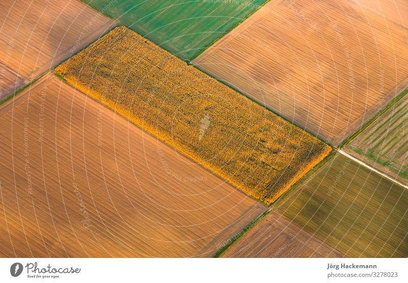 rural landscape with acre from hot air balloon Meditation Nature Yellow Acco aerial afternoon agriculture autumn Background picture clear Europe farming field