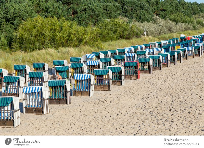 beach with beach chairs in a row in Zinnowitz, Usedom Vacation & Travel Tourism Beach Ocean Sand Baltic Sea Old Beach chair Dune empty Germany Characteristic