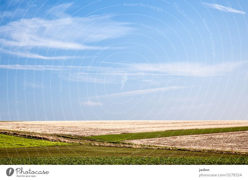 fields and blue skies. Field Sky Spring Green Grass Landscape Clouds Deserted Beautiful weather Day Environment Plant Meadow Copy Space top Horizon Nature Hill