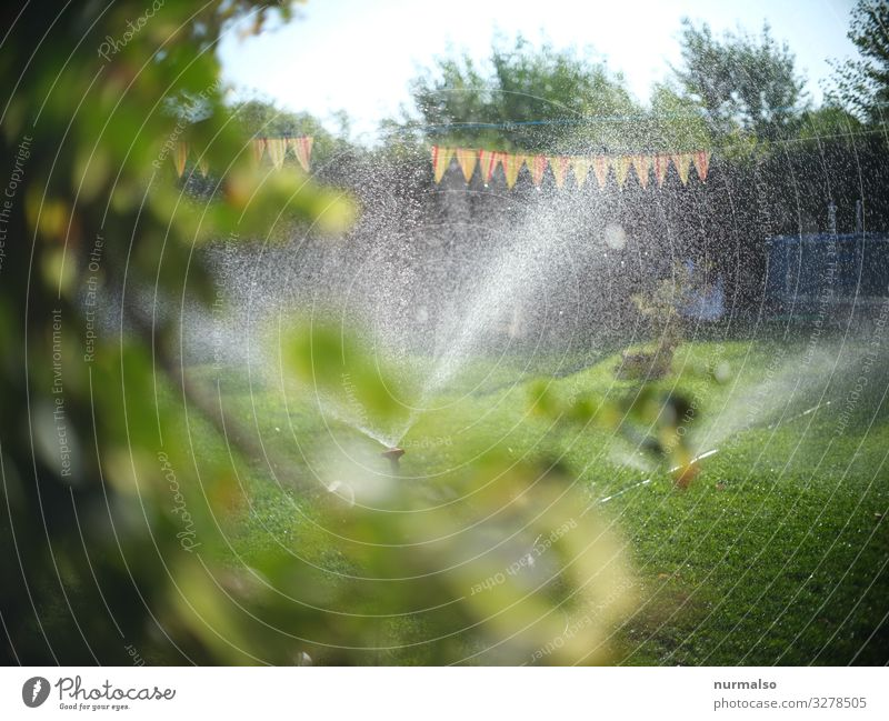 Es war einmal sehr heiss . . . Lifestyle Fitness Sports Training Water Drops of water Climate Climate change Weather Rain Garden Park