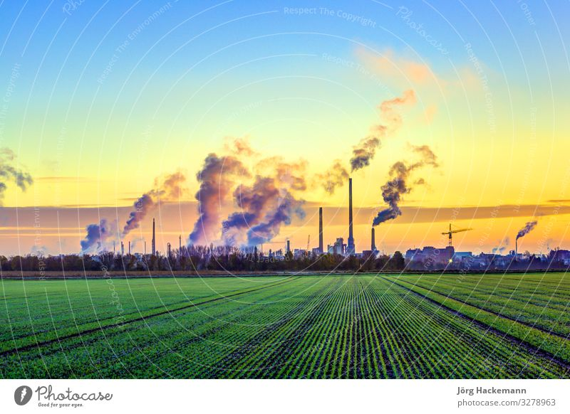 industry complex in Frankfurt in early morning with green fields Sky Nature Plant Colour Landscape Sun Winter Germany Bright Fog Weather Energy Industry