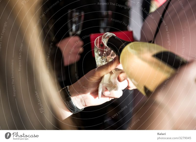 Woman pouring champagne into a glass Sparkling wine Toast Glass Vine Alcoholic drinks champaign Drinking Wedding Married couple toast Restaurant Party People