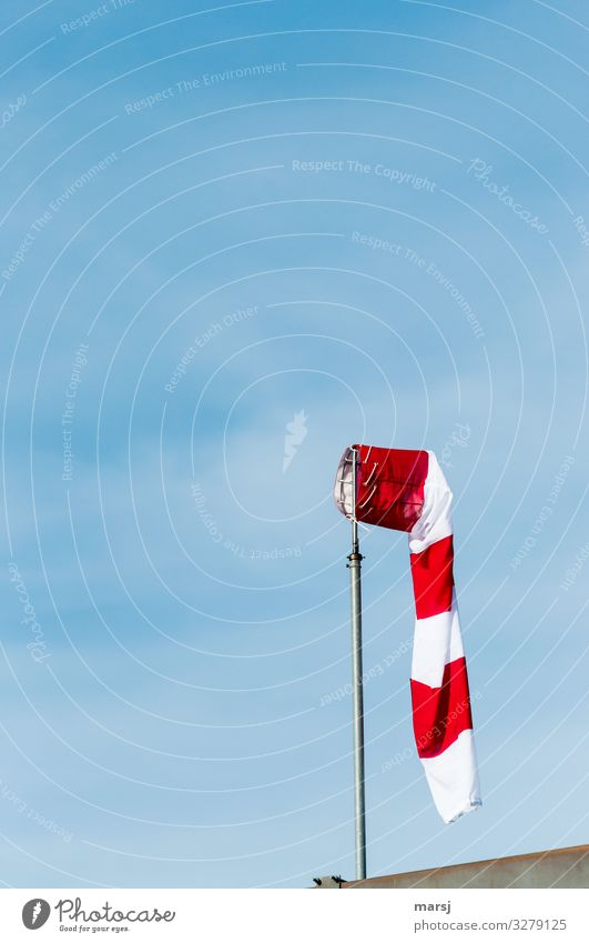Flaccid windsock in front of a blue sky Windsock Sky Shallow depth of field Contrast Light Day Neutral Background Isolated Image Copy Space top Deserted